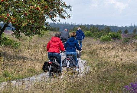 Fietsvakantie in Drenthe - 5 dagen fietsen vanuit het Drentse Dwingeloo