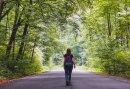 3-daags Wandelarrangement op de Veluwe - Ga wandelen op de Veluwe en verblijf 2 nachten op een luxe hotelkamer