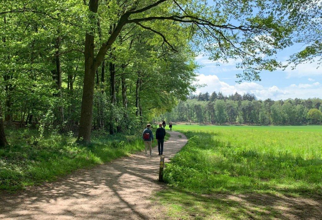 Wandelen in het mooie Montferland - 4 daags wandelarrangement