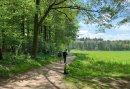 Wandelen door Montferland en de Achterhoek - Geniet van het 5-daags Wandelarrangement