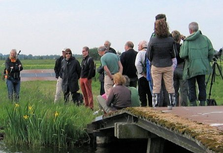 Bello Safari midden in het land - 4 uur All Inclusive wandeltocht door Polder en Vogelreservaat