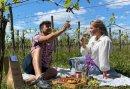 Romantisch nachtje weg in het Montferland met Picknick in de Wijngaard