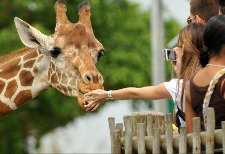 Burgers' Zoo Familie uitje - familiehotel Doorwerth op de Veluwe - super familieuitje