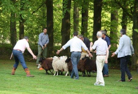 Stijlvol vergaderen in de koninklijke bossen van Lage Vuursche